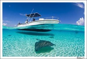 shallowwater